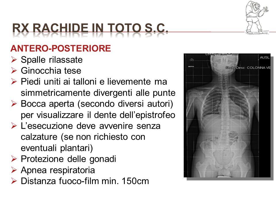RX RACHIDE IN TOTO S.C. ANTERO-POSTERIORE Spalle rilassate