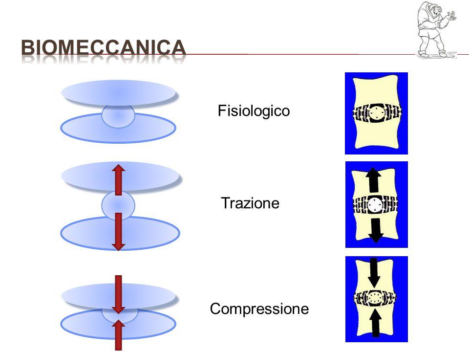bioMECCANICA Fisiologico Trazione Compressione
