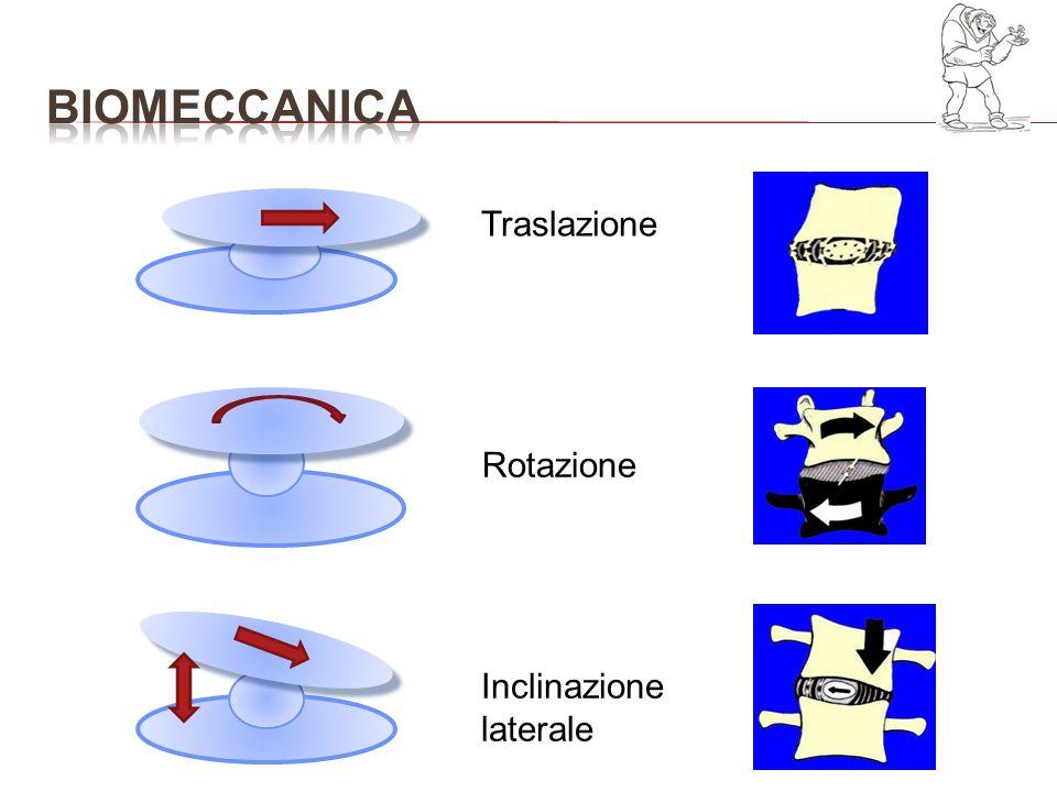 bioMECCANICA Traslazione Rotazione Inclinazione laterale
