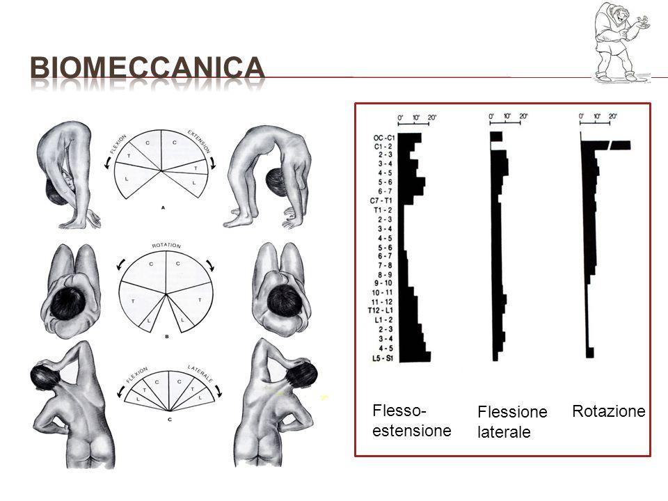 bioMECCANICA Flesso-estensione Flessione laterale Rotazione