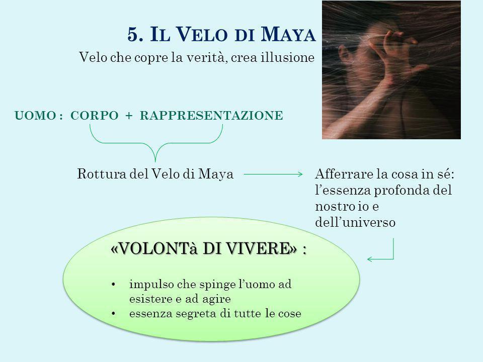 5. Il Velo di Maya «VOLONTà DI VIVERE» :