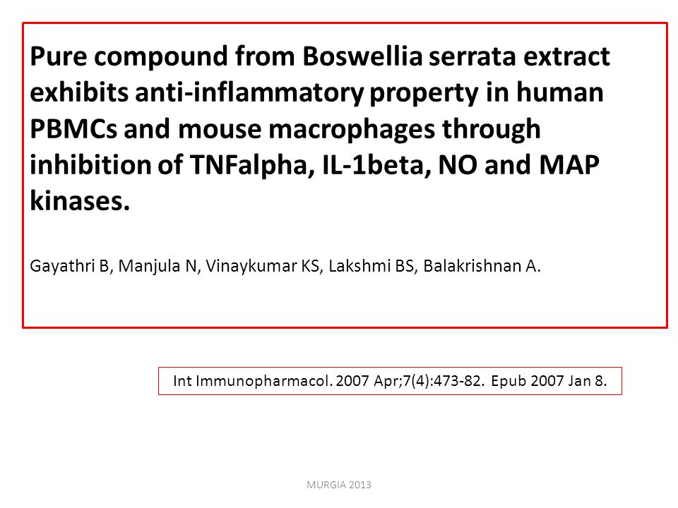 Int Immunopharmacol. 2007 Apr;7(4):473-82. Epub 2007 Jan 8.