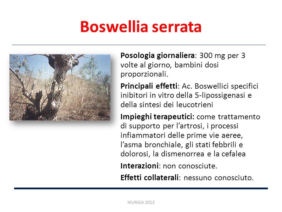 Boswellia serrata Posologia giornaliera: 300 mg per 3 volte al giorno, bambini dosi proporzionali.