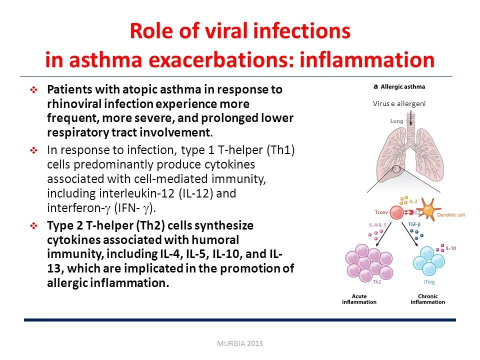 Role of viral infections in asthma exacerbations: inflammation