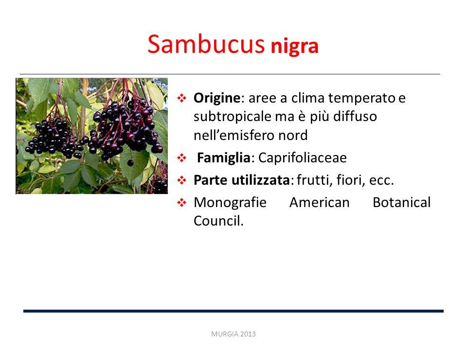 Sambucus nigra Origine: aree a clima temperato e subtropicale ma è più diffuso nell'emisfero nord. Famiglia: Caprifoliaceae.
