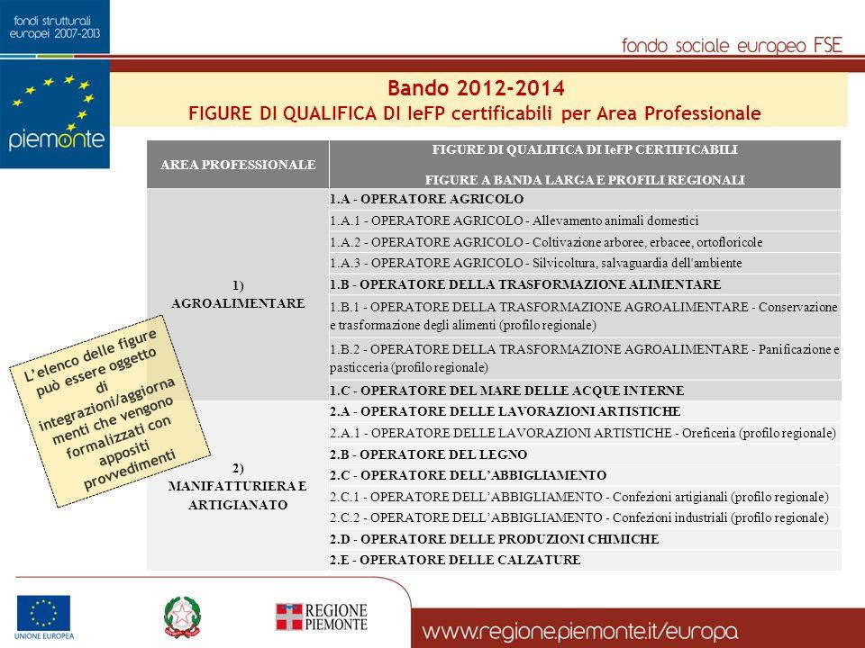 Bando 2012-2014 FIGURE DI QUALIFICA DI IeFP certificabili per Area Professionale. AREA PROFESSIONALE.