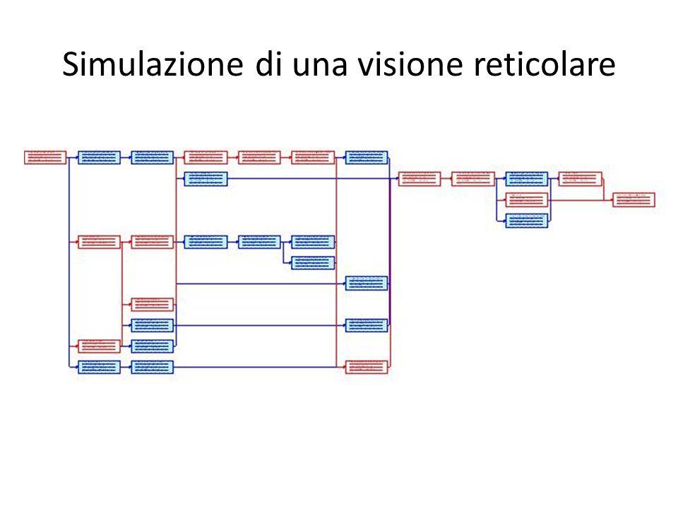 Simulazione di una visione reticolare