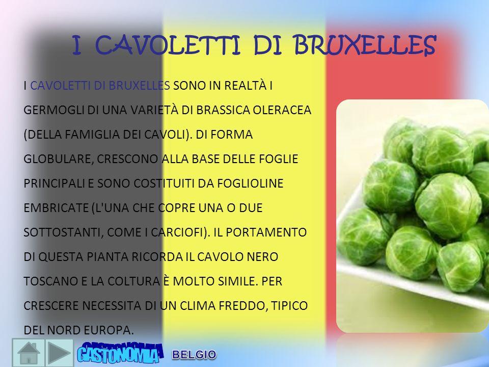 I CAVOLETTI DI BRUXELLES