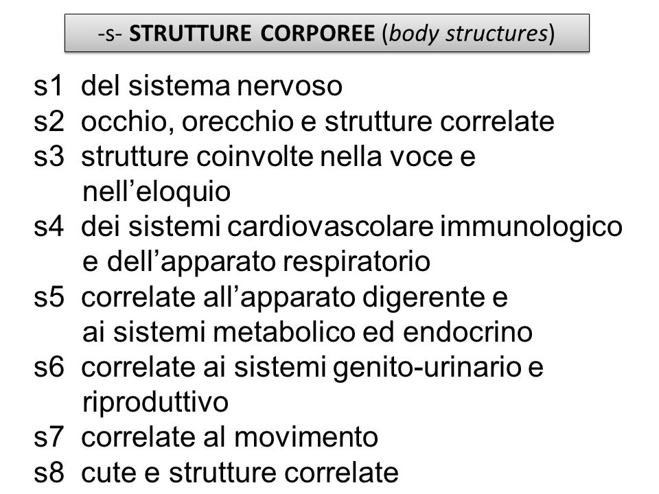 -s- STRUTTURE CORPOREE (body structures)