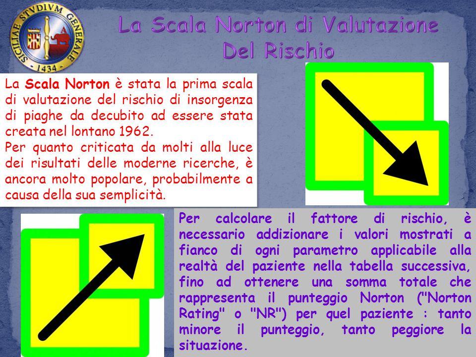 La Scala Norton di Valutazione Del Rischio