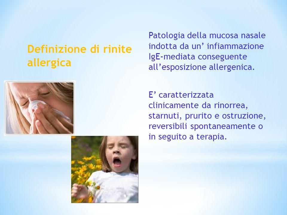 Definizione di rinite allergica