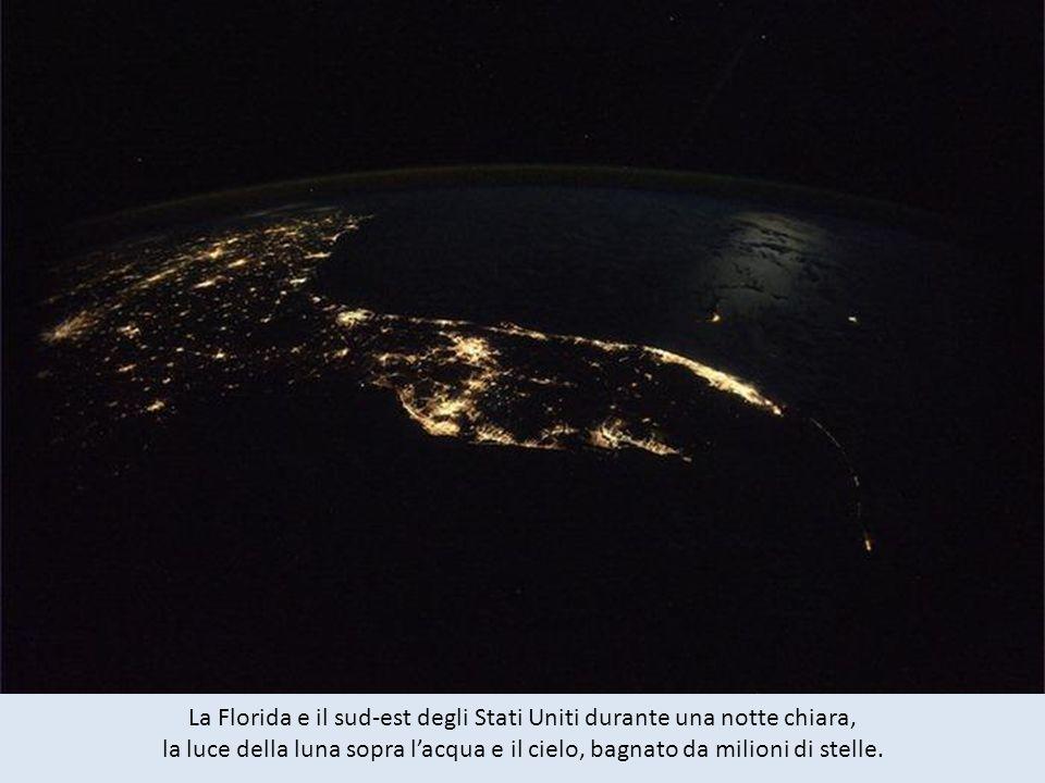 La Florida e il sud-est degli Stati Uniti durante una notte chiara, la luce della luna sopra l'acqua e il cielo, bagnato da milioni di stelle.