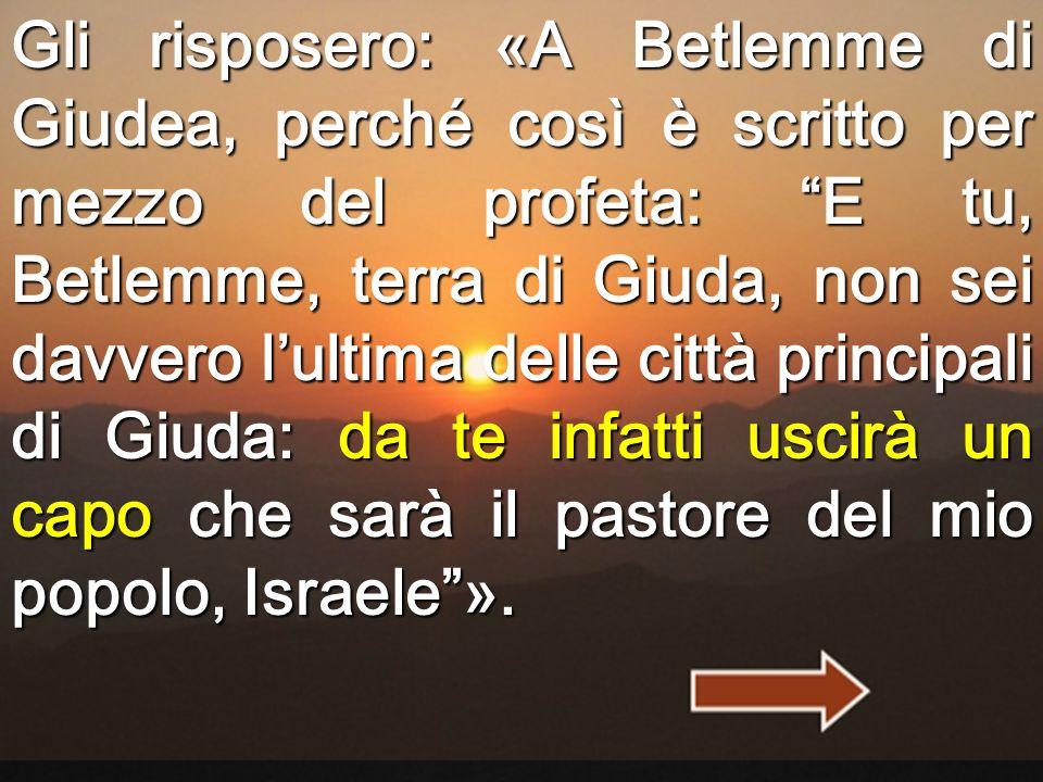 Gli risposero: «A Betlemme di Giudea, perché così è scritto per mezzo del profeta: E tu, Betlemme, terra di Giuda, non sei davvero l'ultima delle città principali di Giuda: da te infatti uscirà un capo che sarà il pastore del mio popolo, Israele ».