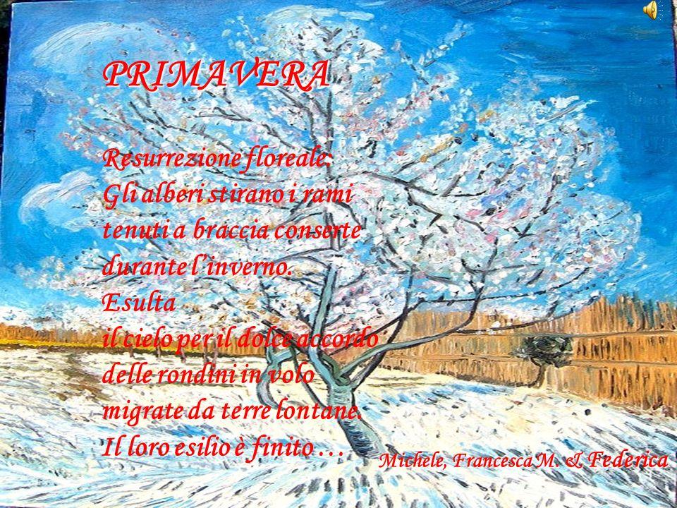 PRIMAVERA Resurrezione floreale: Gli alberi stirano i rami