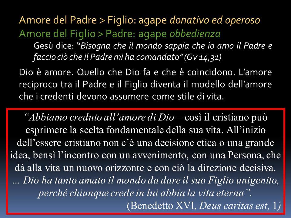 Amore del Padre > Figlio: agape donativo ed operoso