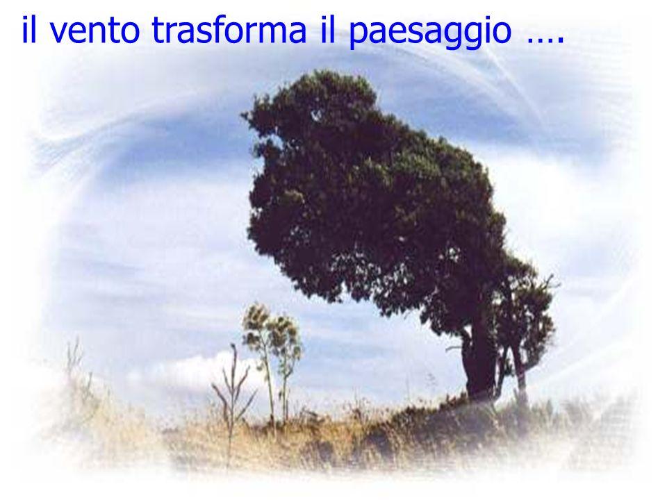 il vento trasforma il paesaggio ….