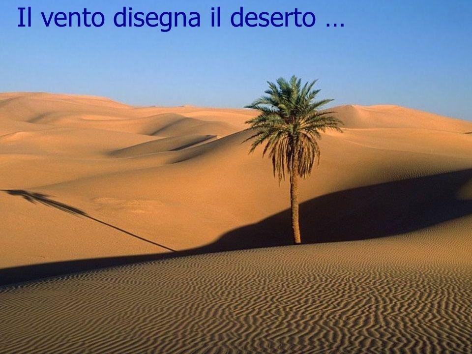 Il vento disegna il deserto …