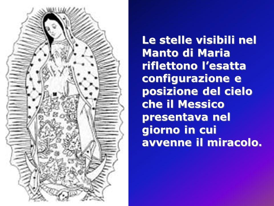 Le stelle visibili nel Manto di Maria riflettono l'esatta