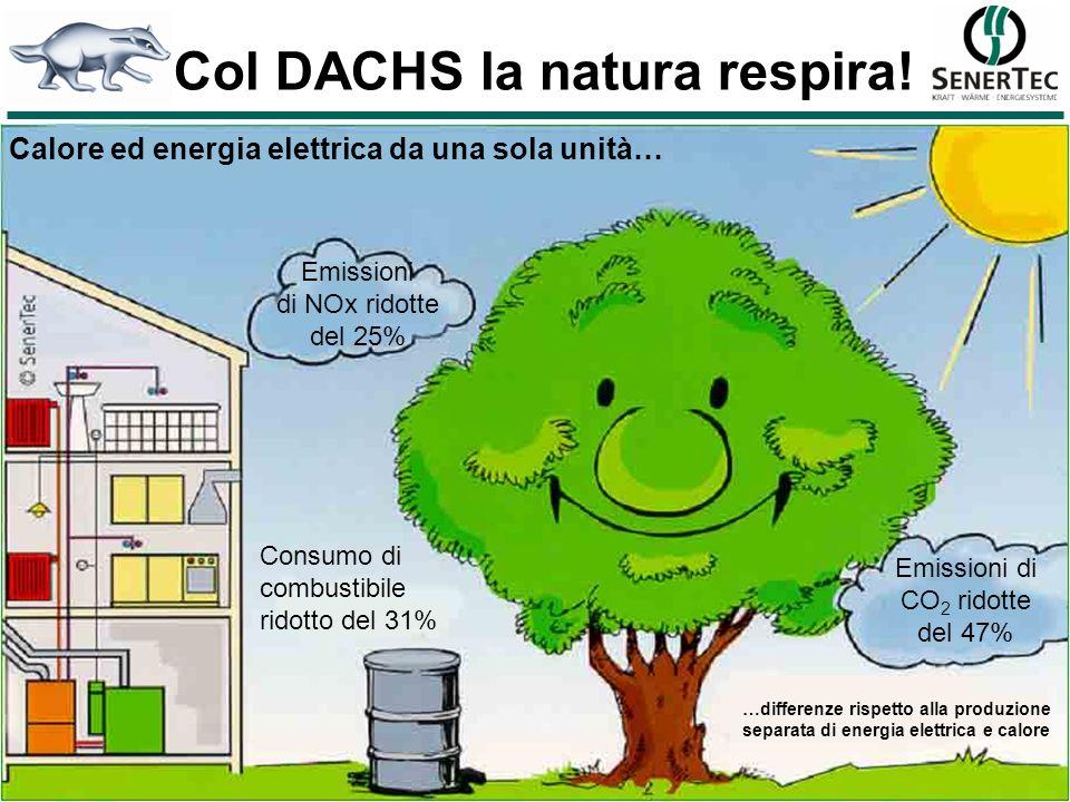 Col DACHS la natura respira!