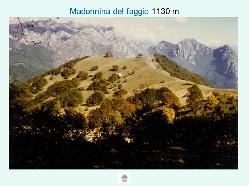 Madonnina del faggio 1130 m