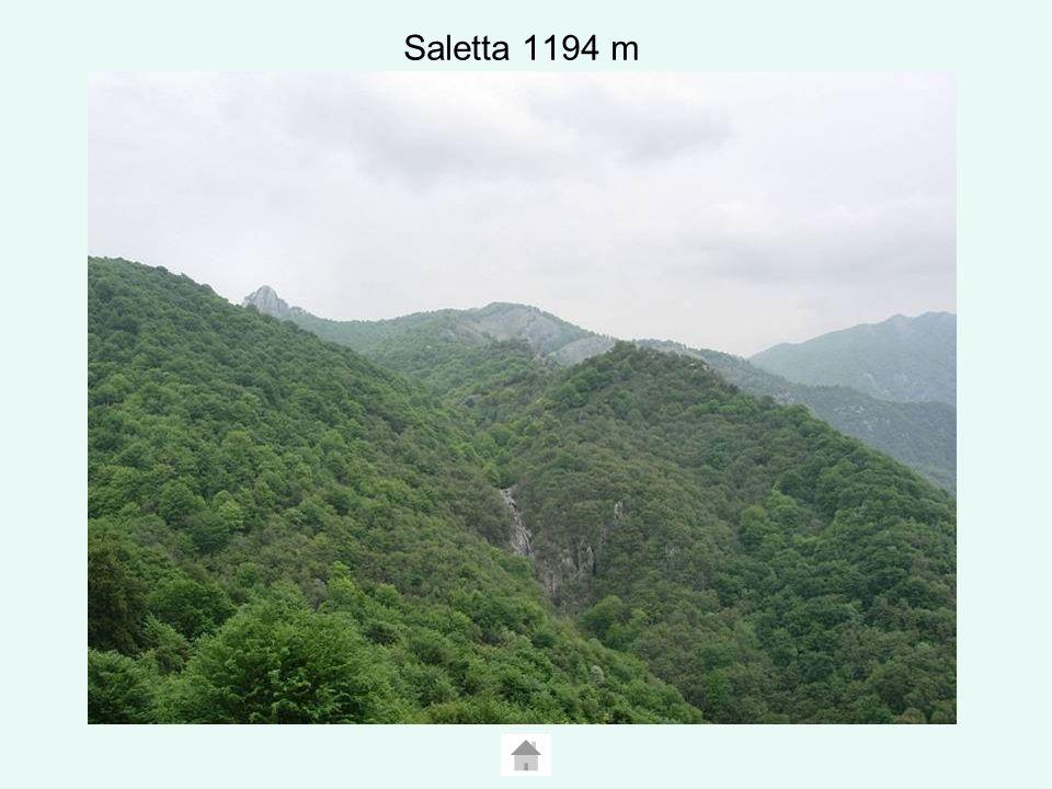 Saletta 1194 m