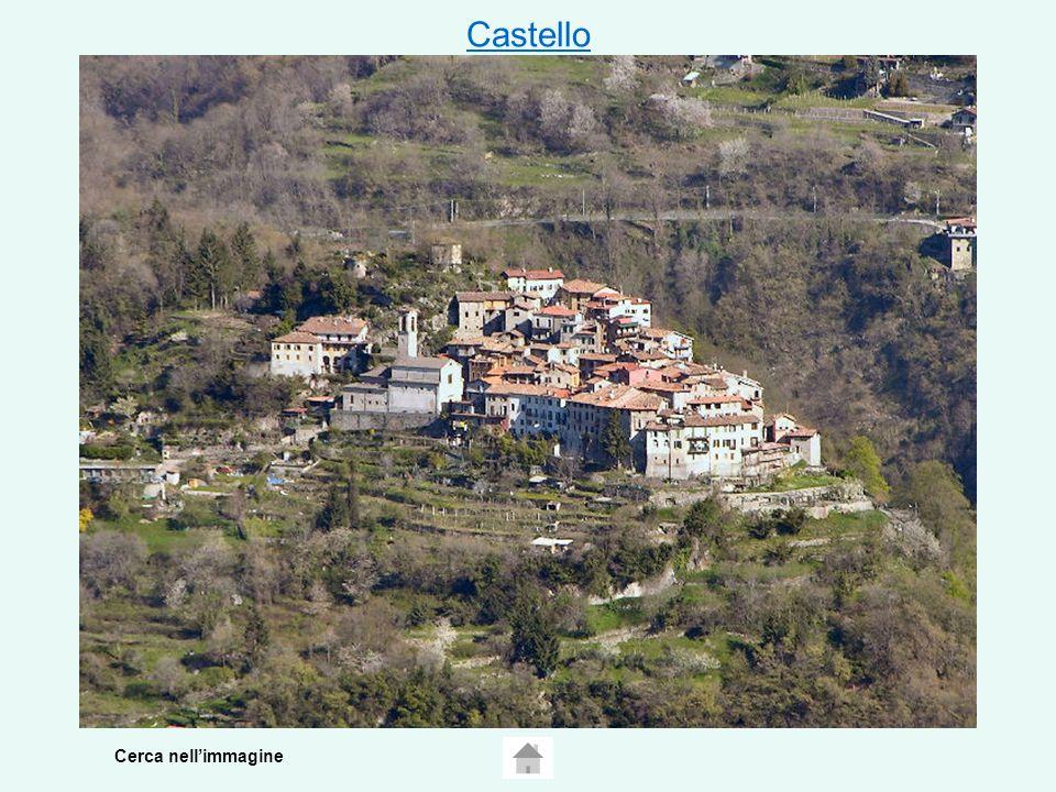 Castello Cerca nell'immagine
