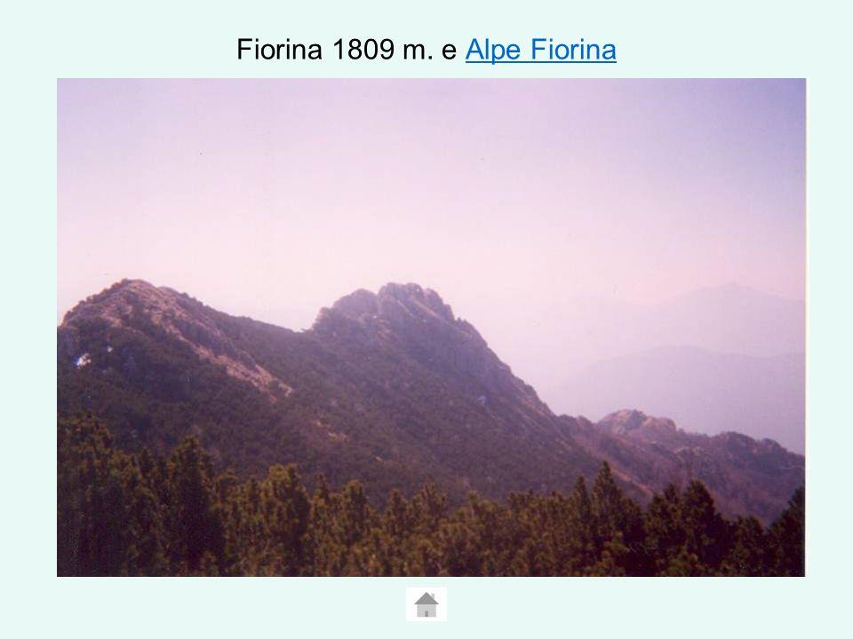 Fiorina 1809 m. e Alpe Fiorina