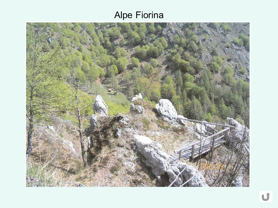 Alpe Fiorina