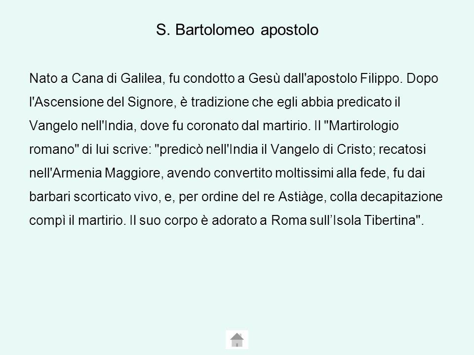 S. Bartolomeo apostolo