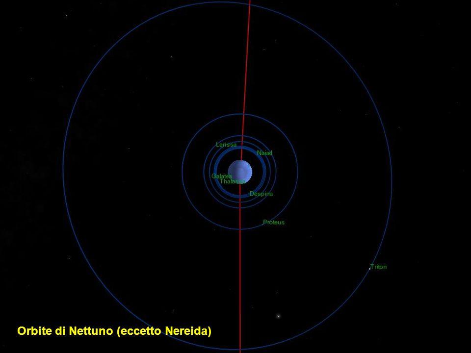 Orbite di Nettuno (eccetto Nereida)