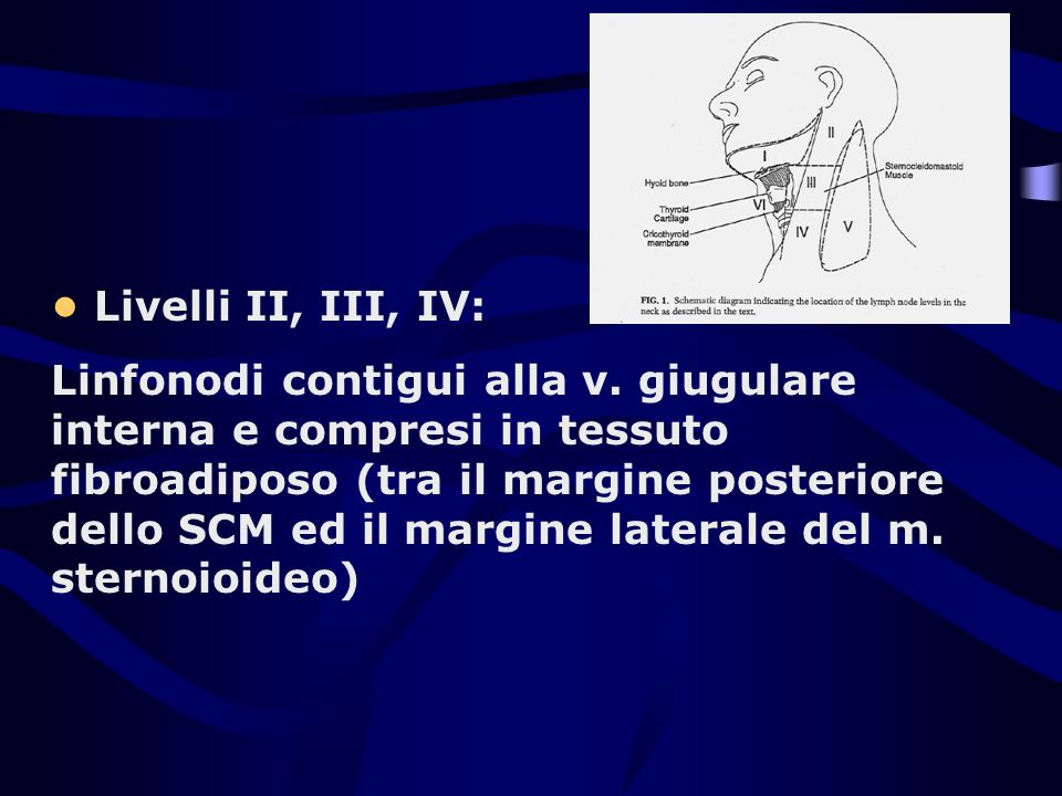 • Livelli II, III, IV: