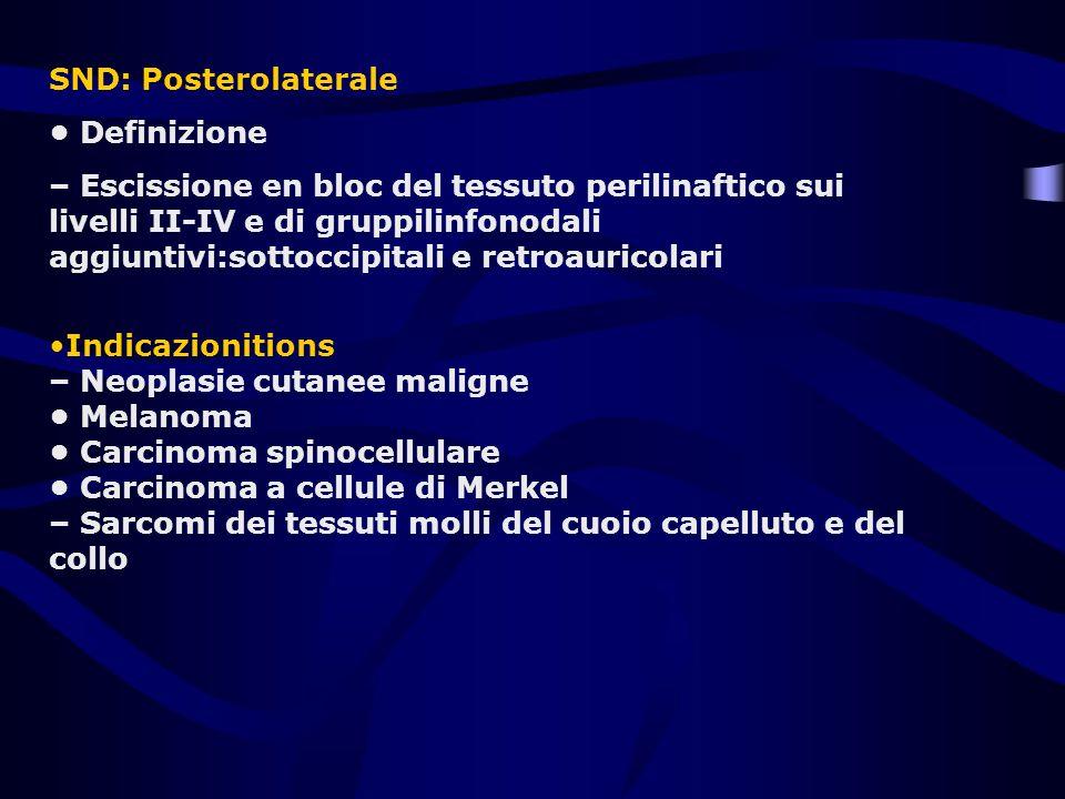 SND: Posterolaterale • Definizione.