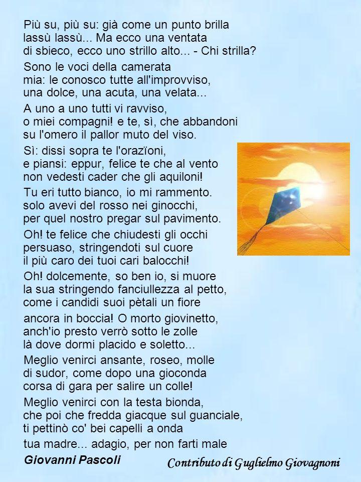 Contributo di Guglielmo Giovagnoni
