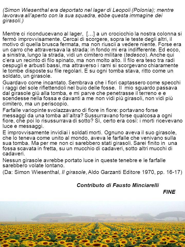 (Simon Wiesenthal era deportato nel lager di Leopoli (Polonia); mentre lavorava all'aperto con la sua squadra, ebbe questa immagine dei girasoli.)