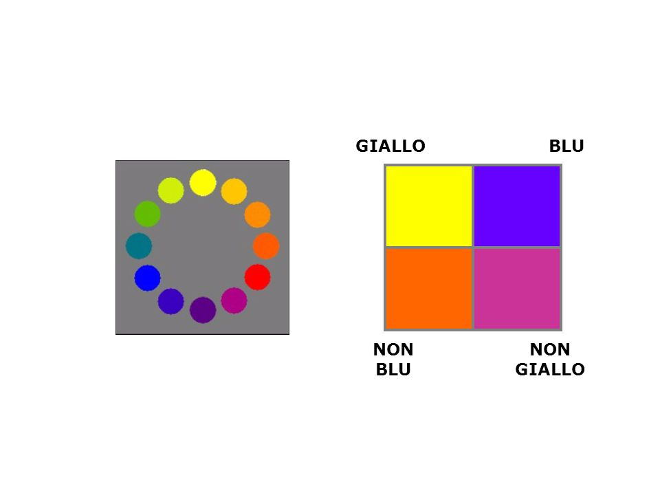 GIALLO BLU NON BLU NON GIALLO