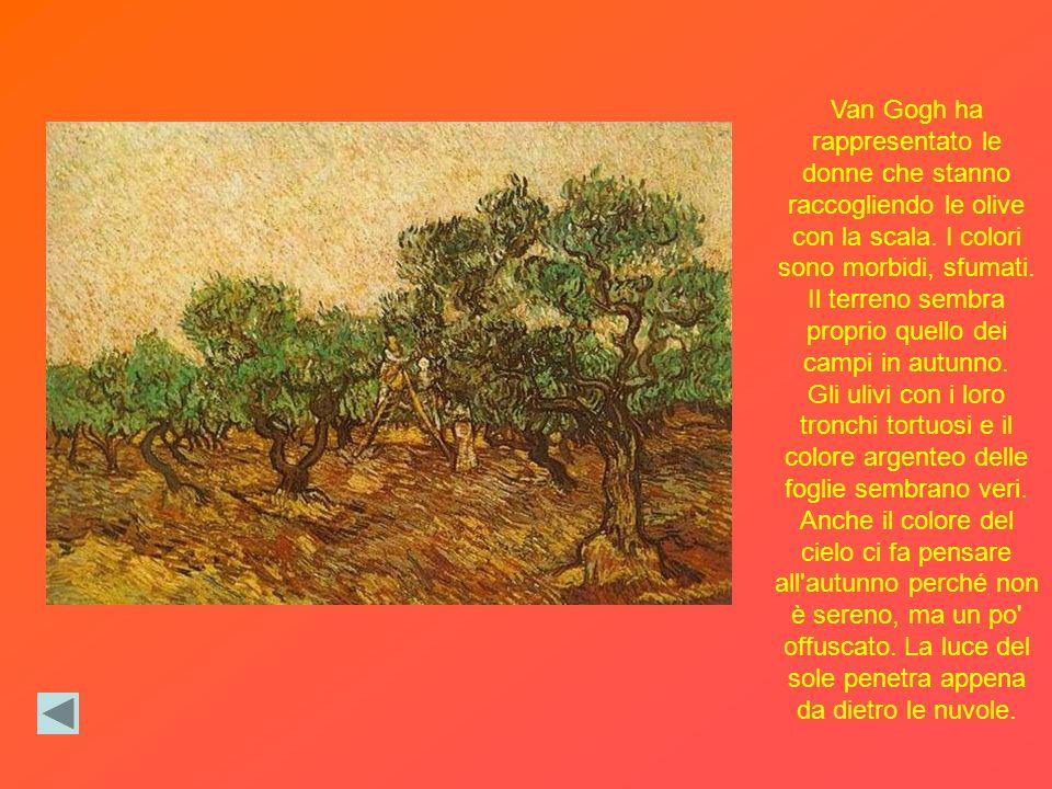 Van Gogh ha rappresentato le donne che stanno raccogliendo le olive con la scala. I colori sono morbidi, sfumati. Il terreno sembra proprio quello dei campi in autunno.