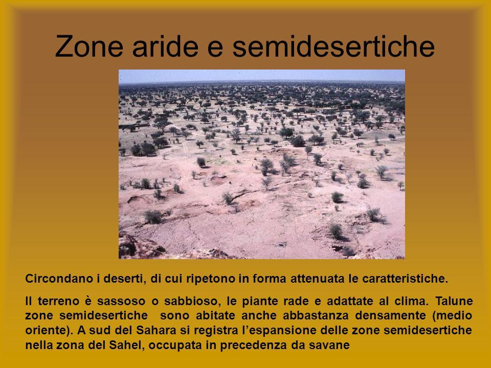 Zone aride e semidesertiche