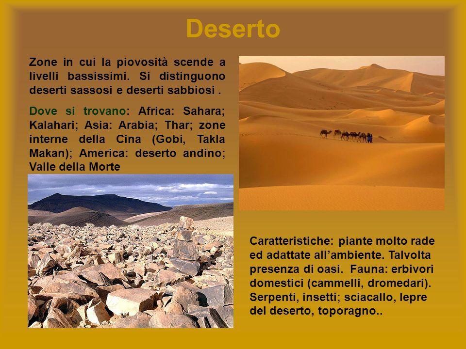Deserto Zone in cui la piovosità scende a livelli bassissimi. Si distinguono deserti sassosi e deserti sabbiosi .