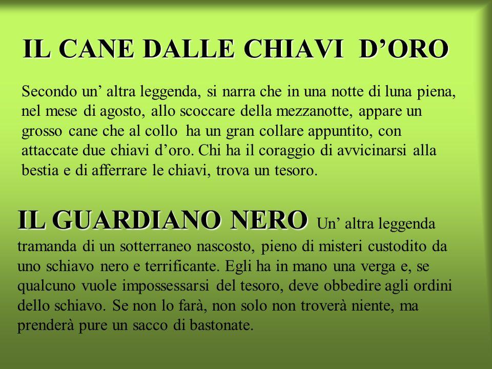 IL CANE DALLE CHIAVI D'ORO