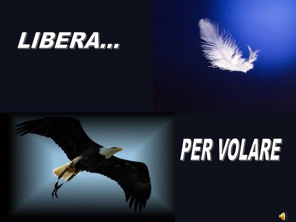 LIBERA... PER VOLARE