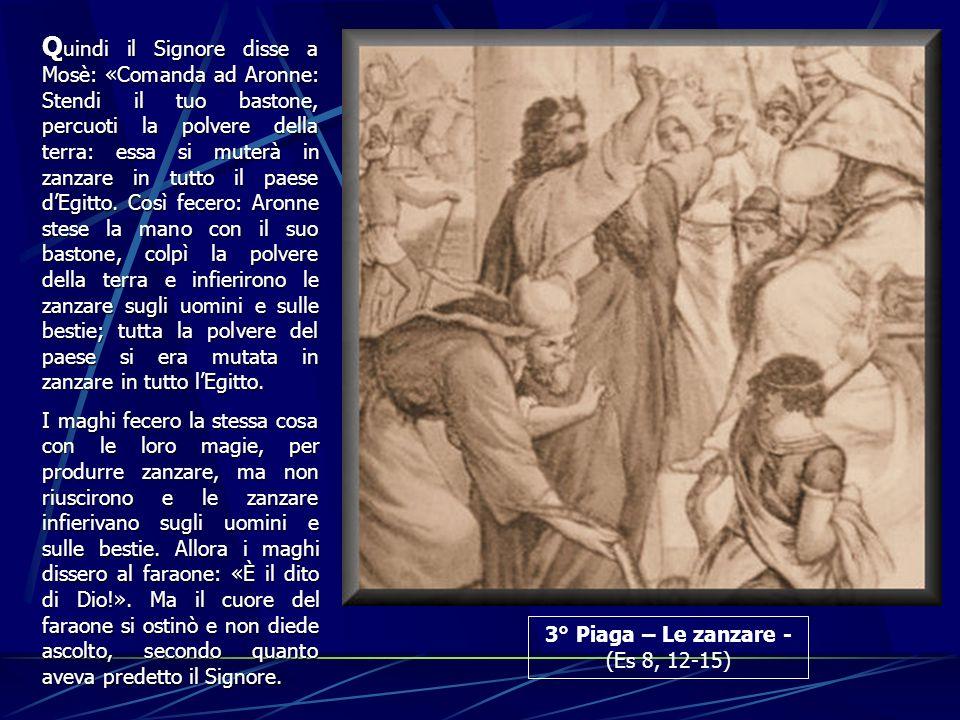 Quindi il Signore disse a Mosè: «Comanda ad Aronne: Stendi il tuo bastone, percuoti la polvere della terra: essa si muterà in zanzare in tutto il paese d'Egitto. Così fecero: Aronne stese la mano con il suo bastone, colpì la polvere della terra e infierirono le zanzare sugli uomini e sulle bestie; tutta la polvere del paese si era mutata in zanzare in tutto l'Egitto.