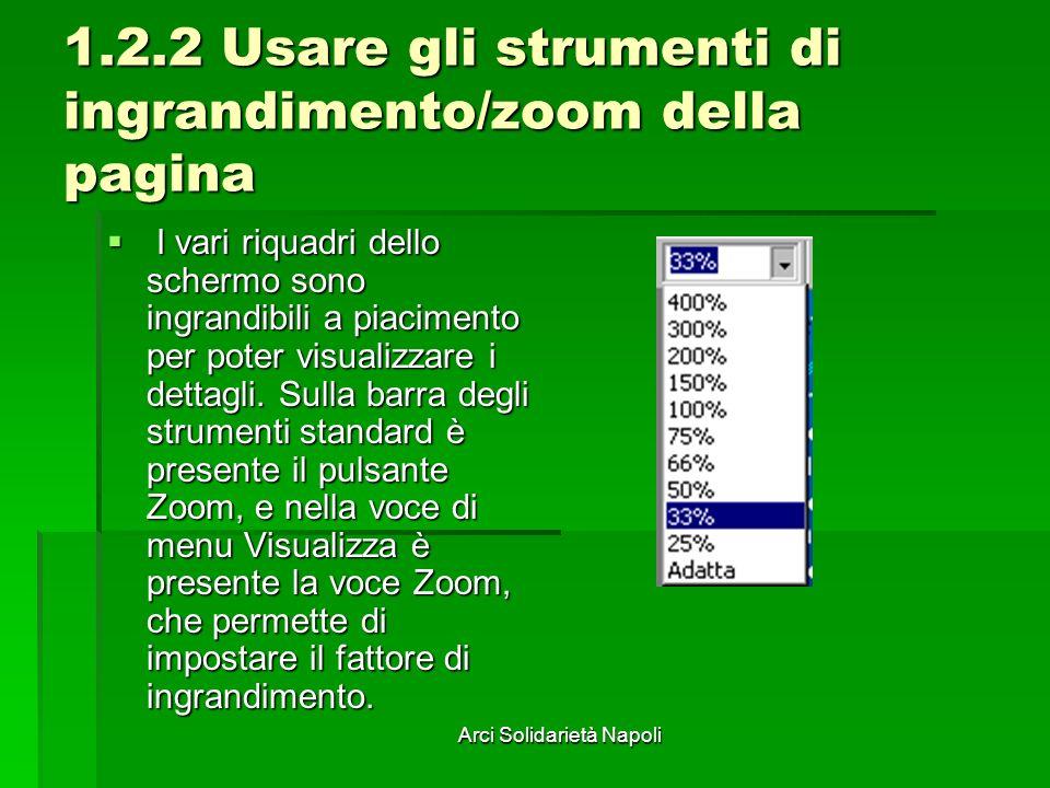1.2.2 Usare gli strumenti di ingrandimento/zoom della pagina