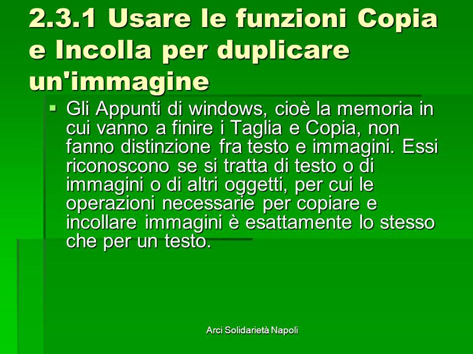 2.3.1 Usare le funzioni Copia e Incolla per duplicare un immagine