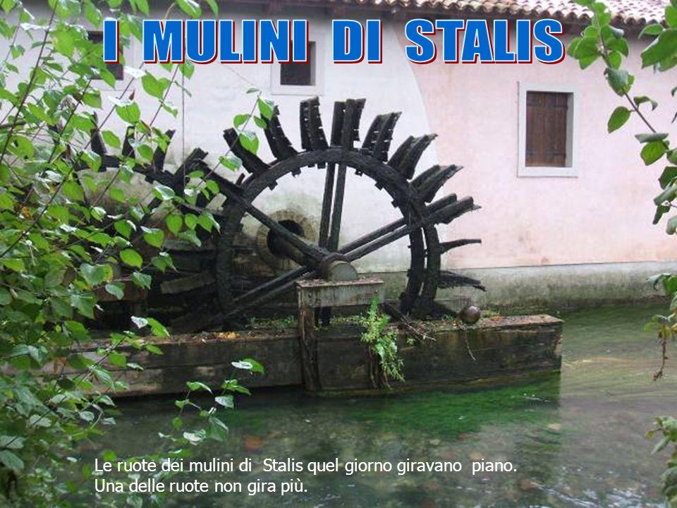 I MULINI DI STALIS Le ruote dei mulini di Stalis quel giorno giravano piano.