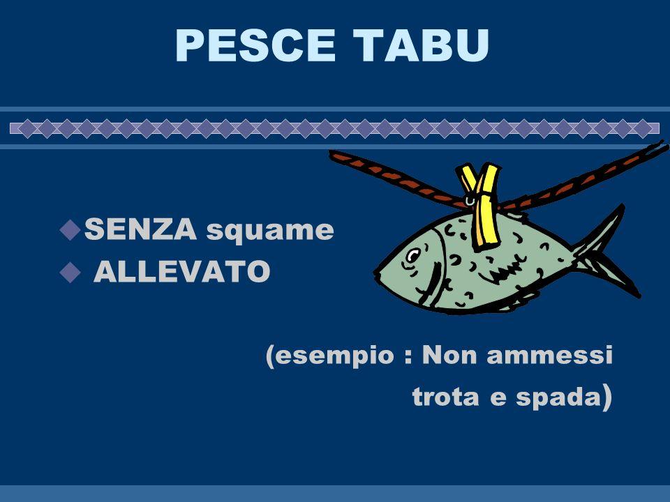 PESCE TABU SENZA squame ALLEVATO (esempio : Non ammessi trota e spada)