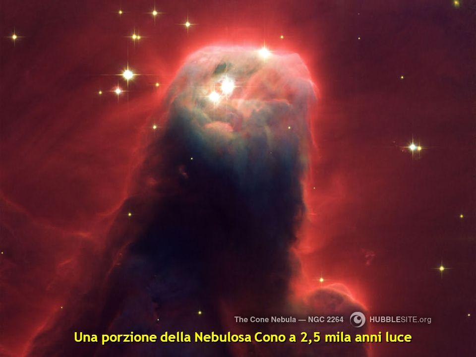 Una porzione della Nebulosa Cono a 2,5 mila anni luce