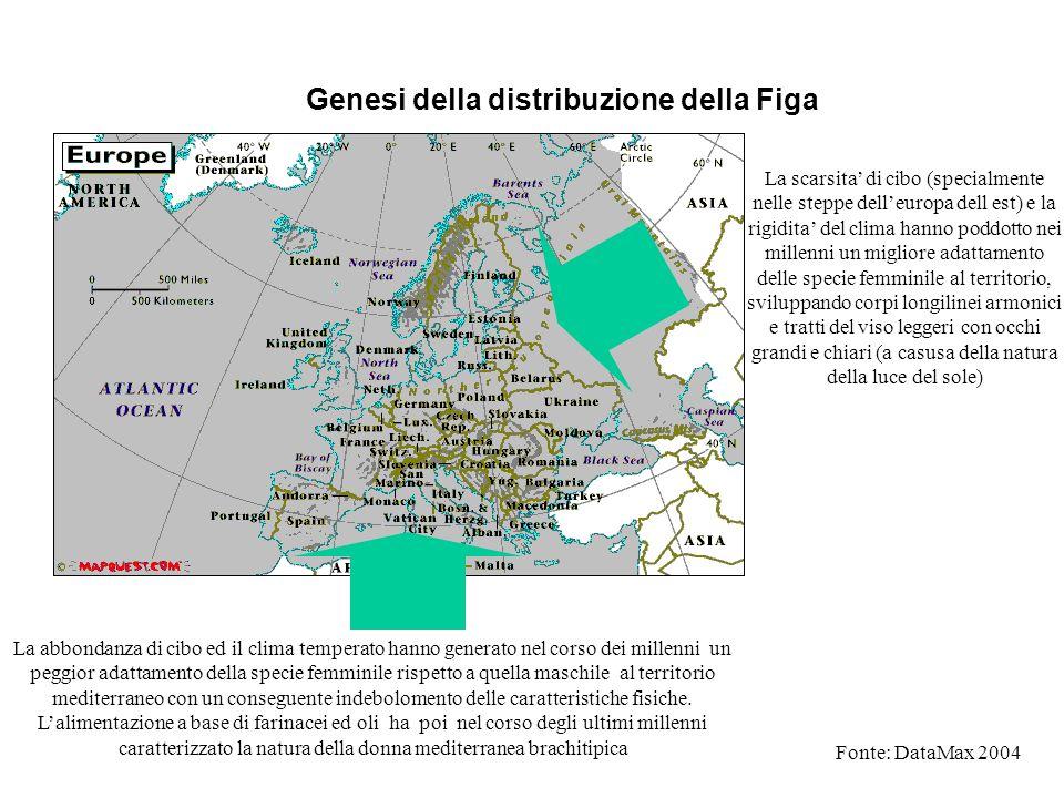 Genesi della distribuzione della Figa