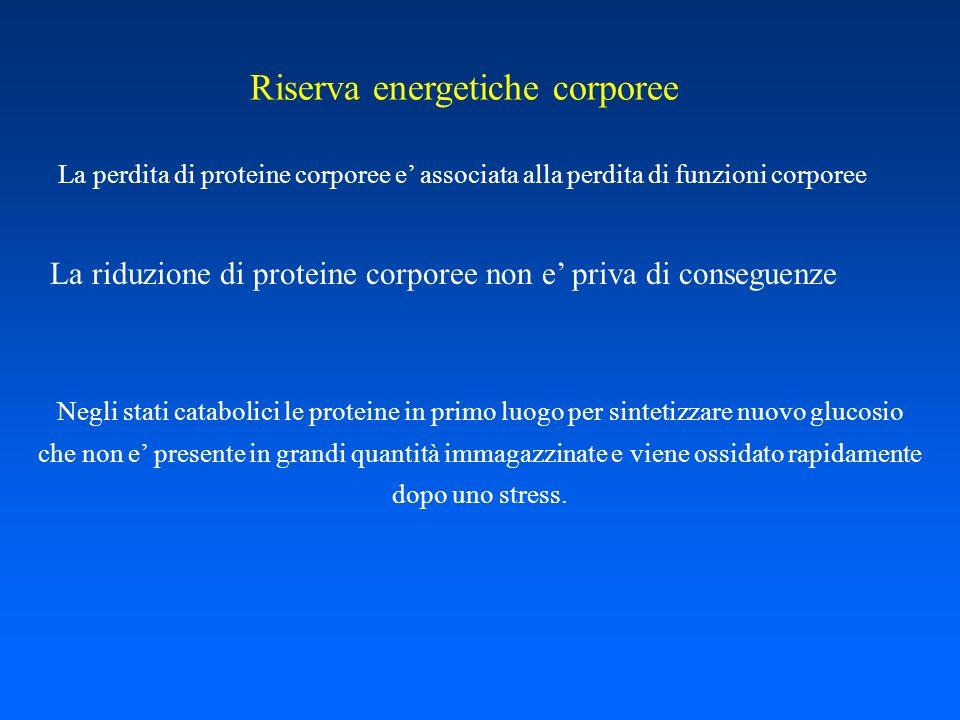 Riserva energetiche corporee