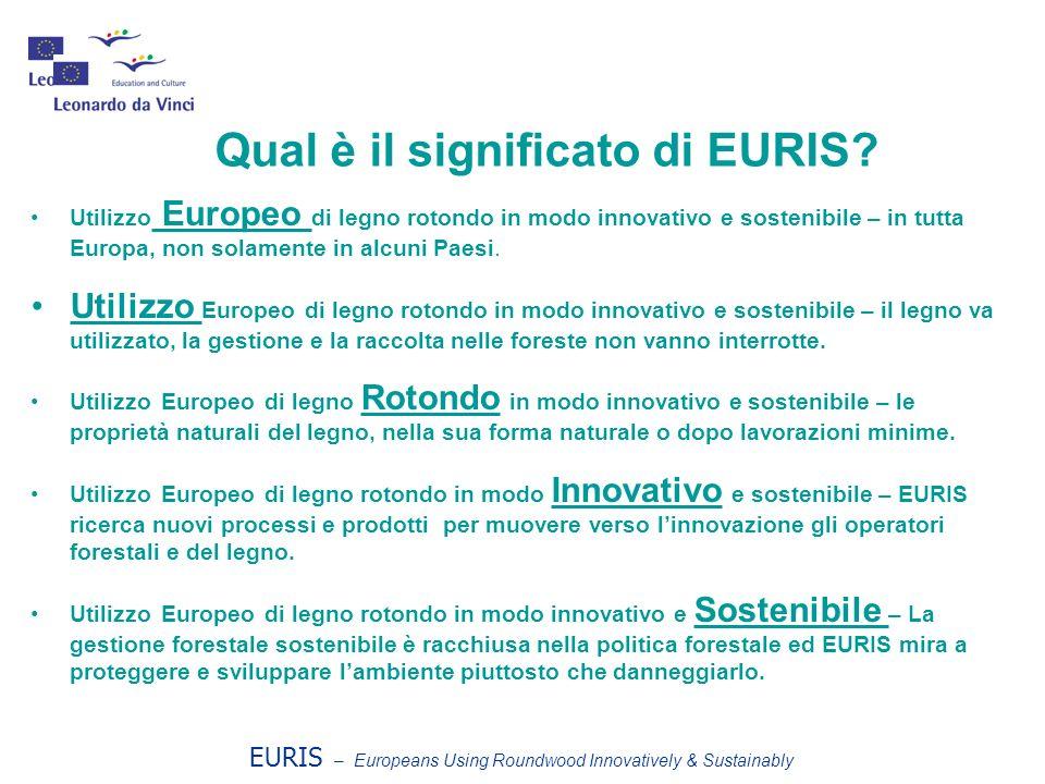 Qual è il significato di EURIS