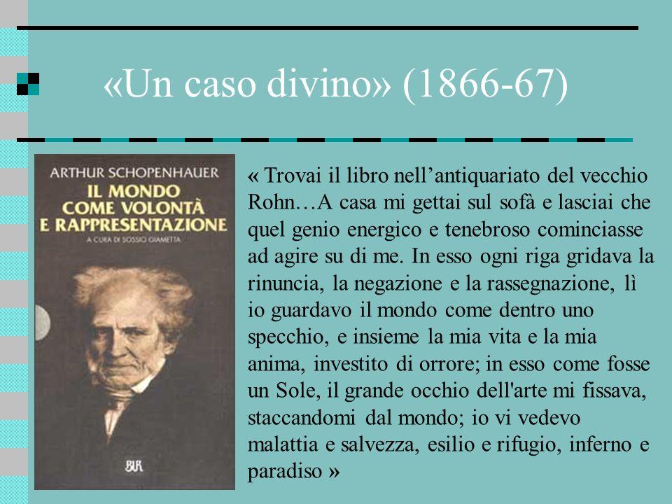 «Un caso divino» (1866-67)